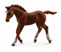 Thoroughbred foal Walking - Chestnut